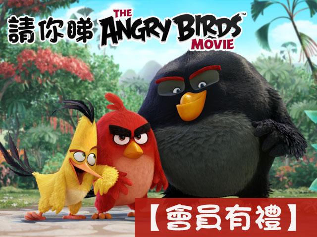 【會員有禮】送你《憤怒鳥大電影》戲票