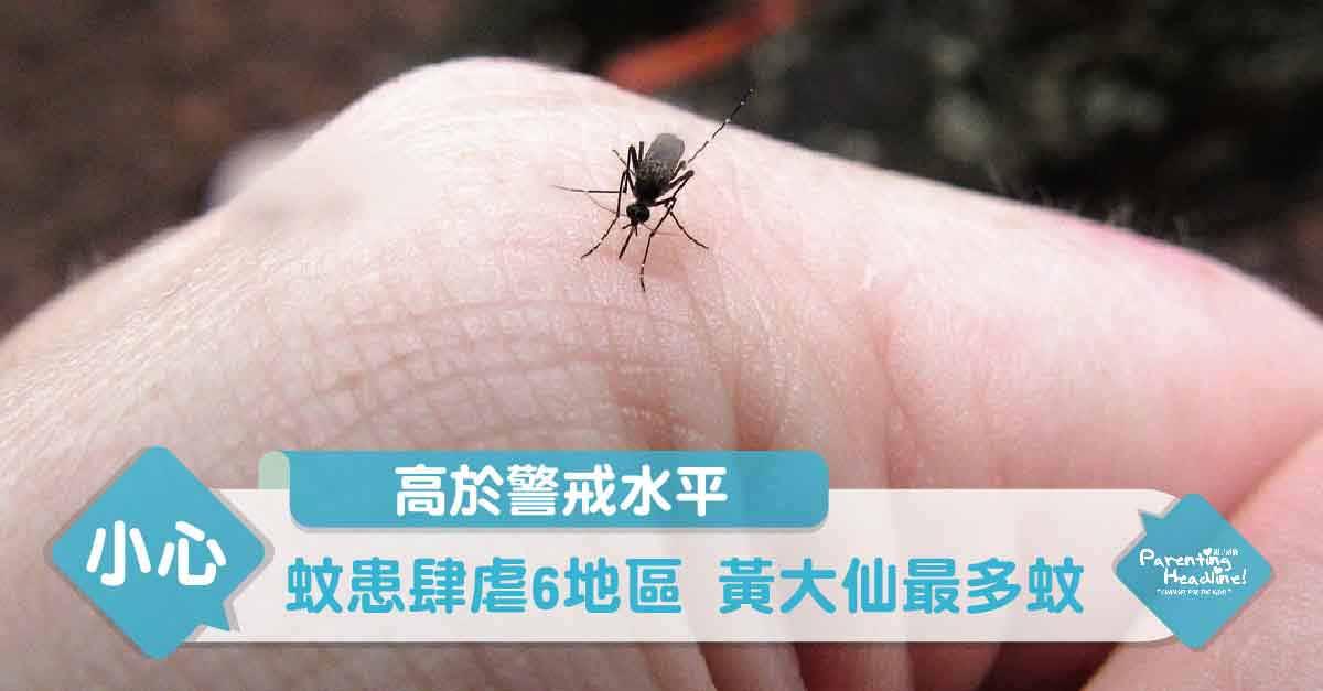 【高於警戒水平】蚊患肆虐6地區 黃大仙最多蚊