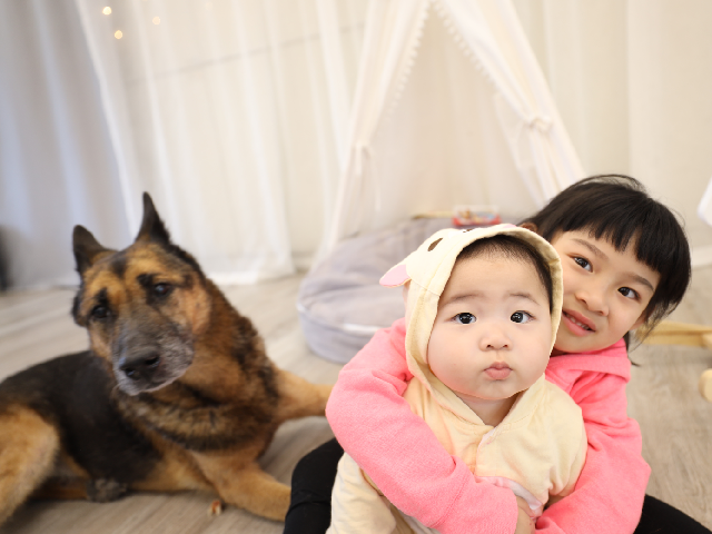 【毛孩與小孩】小惡魔家長:毛孩教會我女兒的事