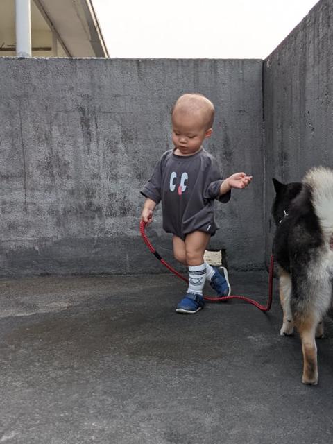 【親子專訪】毛孩家庭多個寶 台媽2招告別過敏